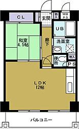 大阪府大阪市港区築港3丁目の賃貸マンションの間取り