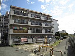 米虫ハイツ[4階]の外観