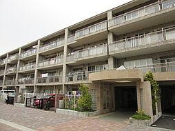 グランマーレ横浜八景島センターコート