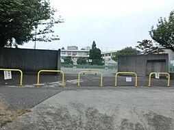 成瀬グリーンハイツ[1階]の外観
