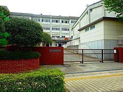 湘南台中学校