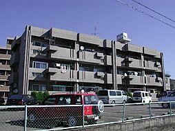 藤本コ−ポ[3階]の外観