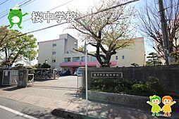 桜中学校(21...
