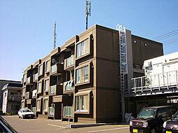 北海道札幌市東区東苗穂十条3丁目の賃貸マンションの外観