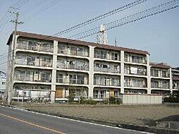 愛知県一宮市花池1丁目の賃貸マンションの外観