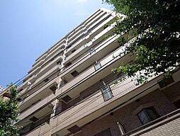 フリーディオ神楽坂[7階]の外観