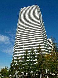 コットンハーバータワ−ズ ベイウエスト(31階)