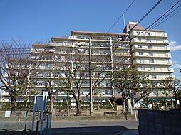 平塚市諏訪町 平塚グリーンマンション