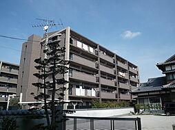 シャルム空港南[501号室]の外観
