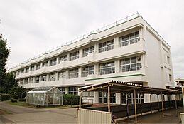 つくば市立茎崎第二小学校(2553m)