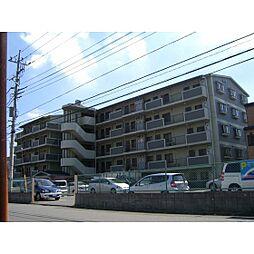 埼玉県富士見市ふじみ野東1丁目の賃貸マンションの外観