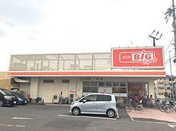 ザ・ビッグエクスプレス(向島店) 徒歩14分