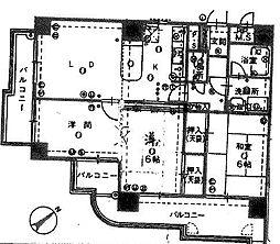 ロマネスク薬院第3[801号室]の間取り