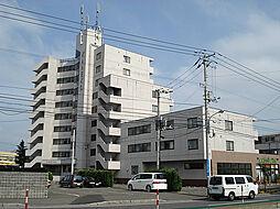 アーバンシティ金子[3階]の外観