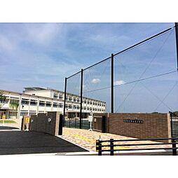 浄水北小学校(約800m)