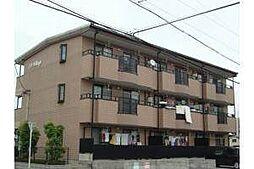 愛知県岡崎市小針町1丁目の賃貸マンションの外観