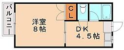 ピナクル臼井[1階]の間取り