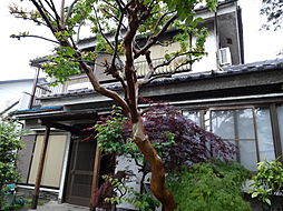 [一戸建] 千葉県松戸市東平賀 の賃貸【/】の外観