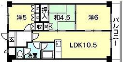 第17柴田マンション[204号室]の間取り