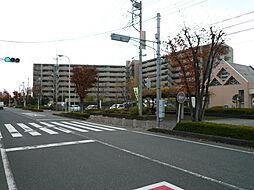 コスモ大宮春野ガーデンパークス
