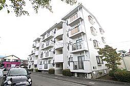 神奈川県相模原市南区若松6丁目の賃貸マンションの外観