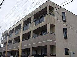 埼玉県川口市鳩ヶ谷本町3丁目の賃貸マンションの外観