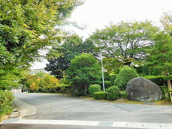 葵中学校まで約...