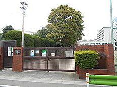 大田区立田園調布中学校(1100m)