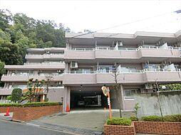 三沢 中古マンション