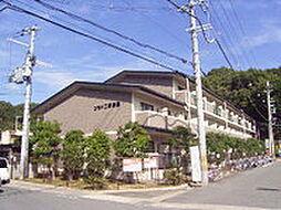 コモド二軒茶屋[2階]の外観