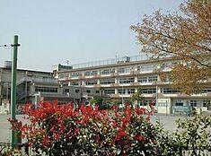 小学校小金井市立 緑小学校まで1207m