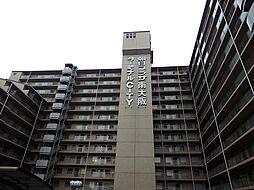 朝日プラザ南大阪ターミナル・シティ 中古マンション