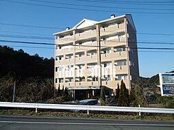 コラルリーフ21[2階]の外観