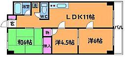 シャトレーヤマモト[2階]の間取り