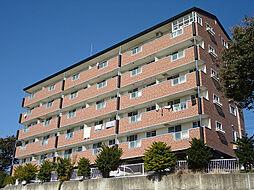 プレステージアルプスNo.2[2階]の外観