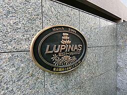 ルピナス国立ステーションスクエア