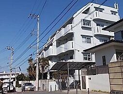 コスモ茅ヶ崎