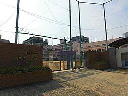 シティーコートブラン[11階]の外観