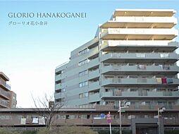 グローリオ花小金井 7階