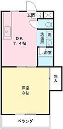 東京都世田谷区成城5丁目の賃貸マンションの間取り