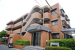埼玉県川口市大字東本郷の賃貸マンションの外観