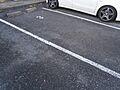 敷地内駐車場で...
