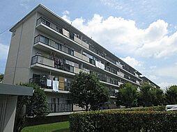富田第二住宅62棟[5階]の外観