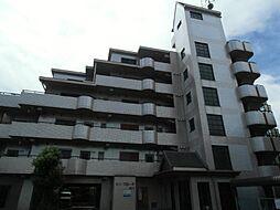 サン・フローラ中川[6階]の外観