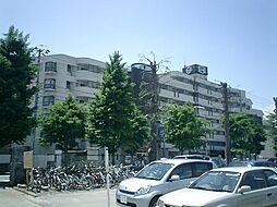 パークハイツ本町