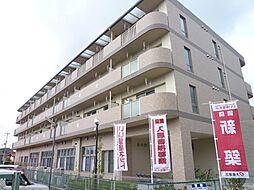 JR阪和線 北信太駅 徒歩16分の賃貸マンション