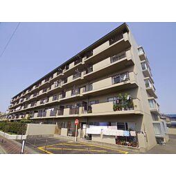 奈良県奈良市芝辻町2丁目の賃貸マンションの外観