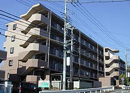 神奈川県横浜市瀬谷区阿久和西2丁目の賃貸マンションの外観
