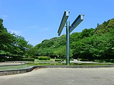 芹ヶ谷公園は、約11.4haもの広さがあり、水遊びのできる噴水や、自然を活かした遊具のある広場、約100本のソメイヨシノが植えられた多目的広場、国際版画美術館などがあり、子どもから大人まで楽しめます。