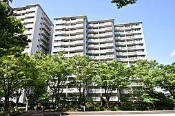 「中野島」駅歩2分 ペット可 新多摩川ハイム 6号棟